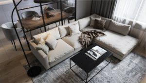 Canapé pour un salon moderne: Guide de choix et 50+ idées