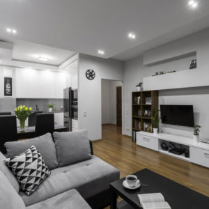 White and gray living room: Design and decoration features