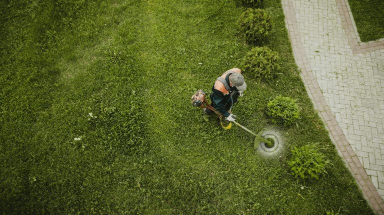 Comment choisir le coupe bordure pour son jardin