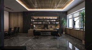 Rules for choosing Executive office furniture: types, style, and decor