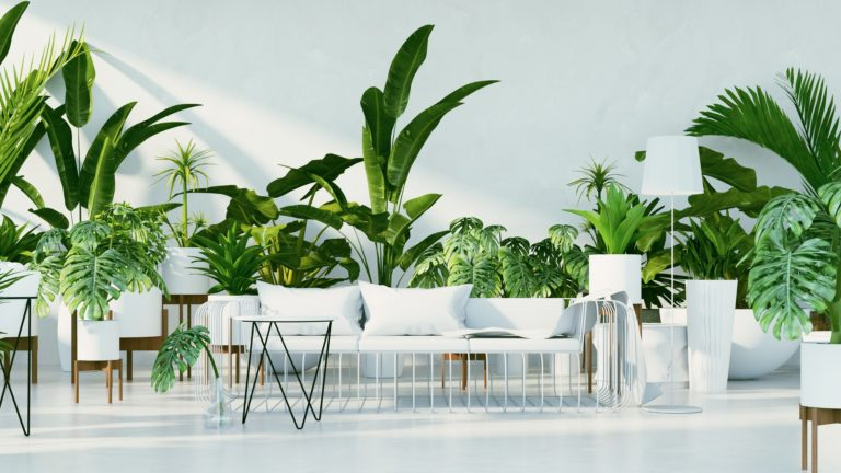 How to make your living room more summer-friendly