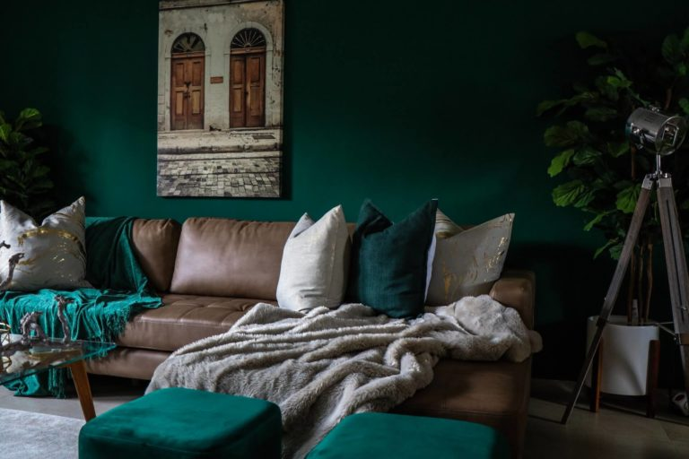 Throw pillows for leather couch: colors, styles, and modern ideas